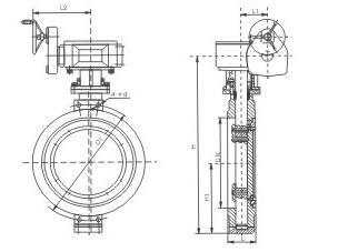 D371X-16蜗轮蝶阀结构图