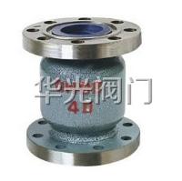 H42H-16/25C铸钢立式止回阀